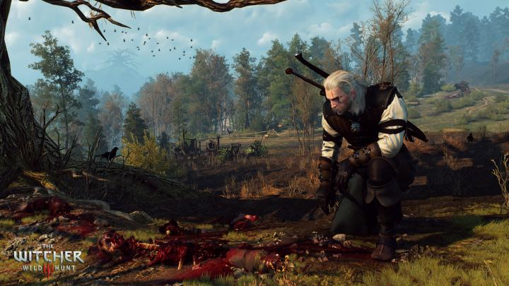 The_Witcher_3_Wild_Hunt_Alas,_poor_Yorick.jpg